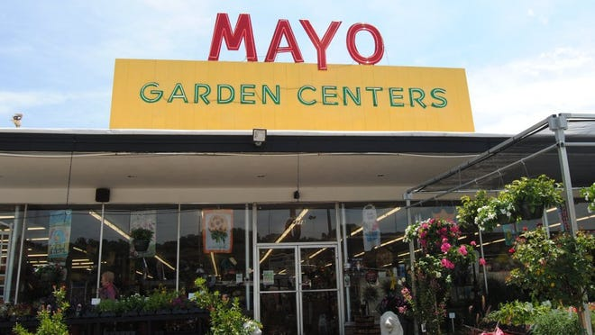 The Bearden location of Mayo Garden Centers is shown here at 4718 Kingston Pike. There are three locations in Knoxville.