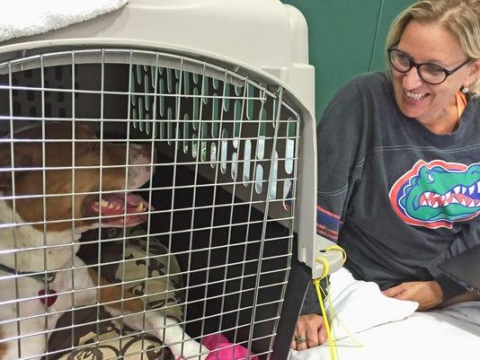 Hurricane Matthew pet friendly shelter