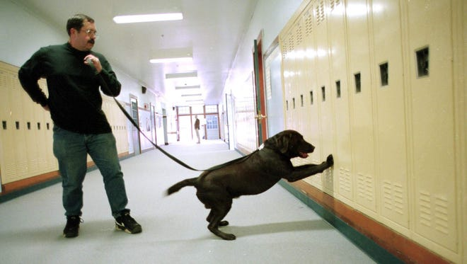 In this file photo, a dog conducts a drug search in a school.