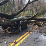Trees crush cars, block roads during storm; power lost