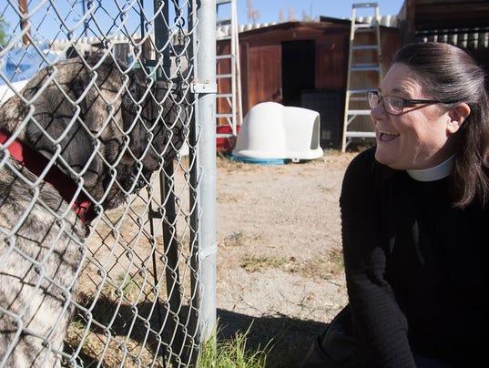 blessing-homeless-dogs-1.jpg