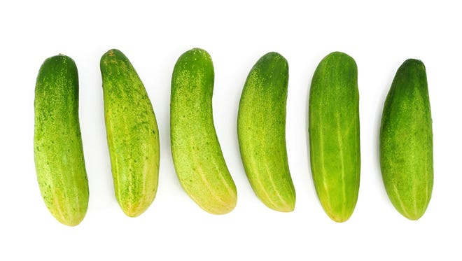 Make pickles with all the cucumbers ready now in the garden.