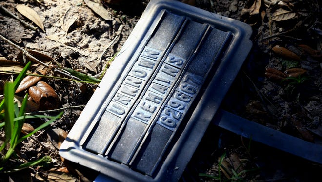 "A metal name tag with the words ""Unknown Remains"" marks a spot where it's likely a migrant who died in Brooks County brush country is buried. Graduate students from Texas State University and University of Indianapolis searched for bodies of migrants that may be buried at the Sacred Heart Burial Park on Saturday, Jan. 7, 2017, in Falfurrias."