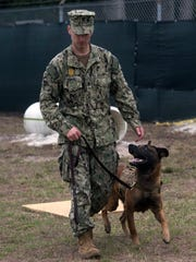 Petty Officer 2nd Class Joe Rummel trains with Figo, a military working dog, on board Pensacola Naval Air Station Wednesday, Feb. 14, 2018.