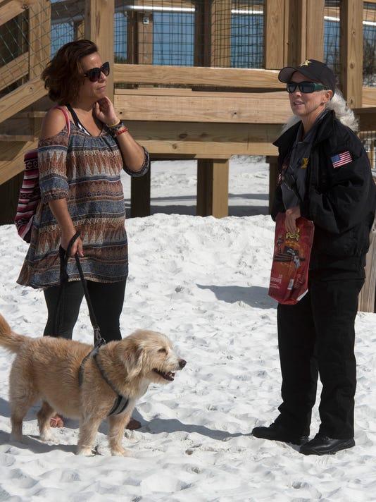 Dog Beach Patrol
