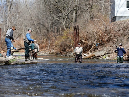 Anglers gather at a Catharine Creek fishing hole Friday