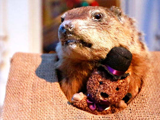"York Slumbering Groundhog Lodge's mascot, Poor Richard, proclaims, ""Early spring is the thing,"" during the 90th annual Groundhog Day event at York Elk Lodge 213 in York City, Friday, Feb. 2, 2018. Dawn J. Sagert photo"