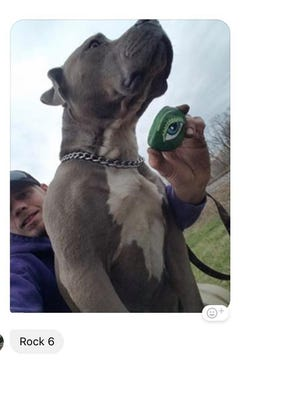 Rock No. 6 is found by a local resident walking his dog.