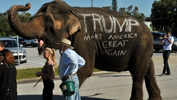 A circus elephant greets supporters of Donald Trump