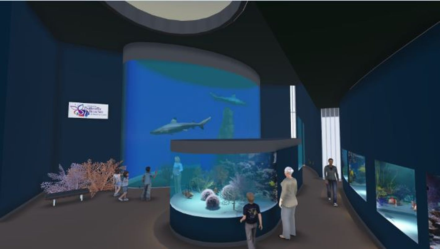 butterfly house, aquarium eyeing move downtown