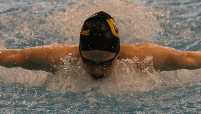 Ursuline's Sydney Lofquist swam a 4:48.37 in the 500 freestyle during the Div. I preliminaries in Canton Friday.