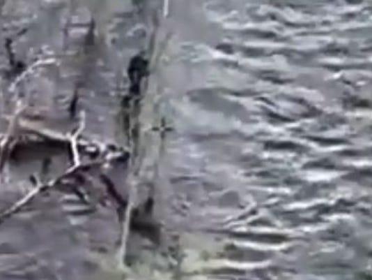 Croton River rescue