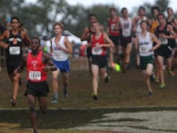 Apalachee Regional Park was again the setting for the FSU Invitational pre-state cross country meet.