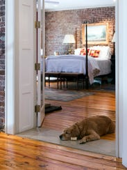Sophie catches a nap in the doorway of the master bedroom.