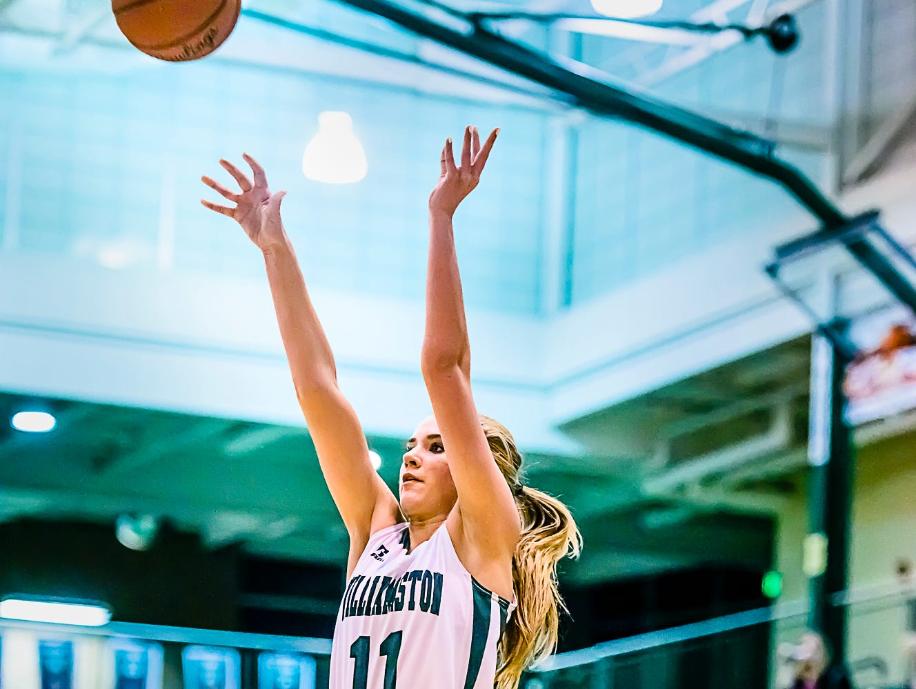 Paige Basore of Williamston puts up a jump shot during the Hornets' game with Waverly Tuesday.