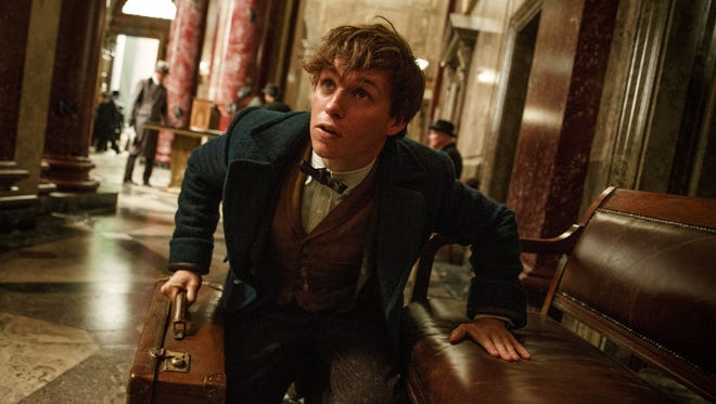 It's a good thing TSA doesn't exist in the Harry Potter universe, because what's in Newt Scamander's (Eddie Redmayne) suitcase would never pass muster.