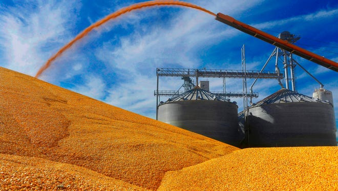 WI Rapids Grain executives vastly overstated the value of their corn inventory, which was used to secure loans from four banks. The CEO and chief financial officer have both been sent to federal prison.