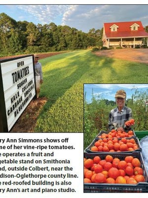 Mary Ann Simmons shows off some of her vine-ripe tomatoes. She operates a fruit and vegetable stand on Smithonia Road outside Colbert near the Madison-Oglethorpe county line. The red-roofed building is also Mary Ann's art and piano studio.