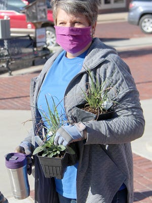 Master Gardener Karen Riffey holds new plants as she, and other gardeners, put new plants in eight of the planter boxes on South Main Street. New flowers, grasses and trees were planted to bring some change and more color to downtown Pratt.