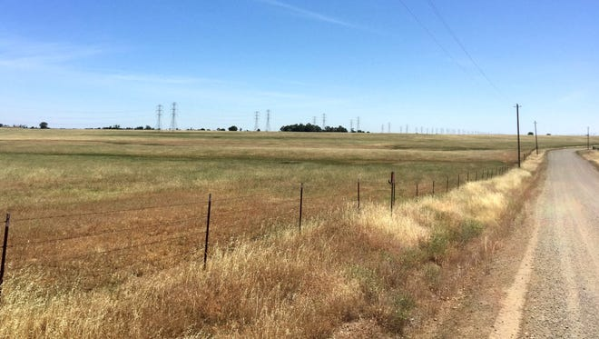 John Duarte faces a $2.8 million fine for plowing this field south of Red Bluff back in 2012.