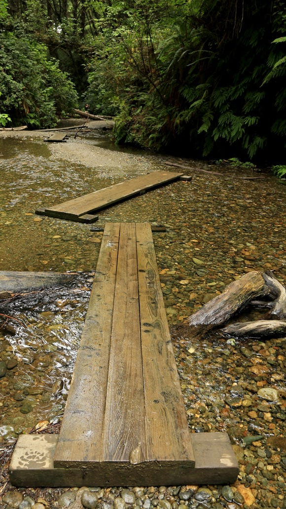 Wooden walkways keep hikers' feet relatively dry while exploring Fern Canyon in California's Prairie Creek Redwoods State Park.