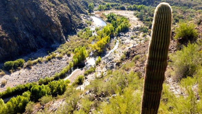 Black Canyon Trail | Historically, Black Canyon Trail served as a corridor of travel for Native Americans and later was used as a stage road and by ranchers to move livestock.