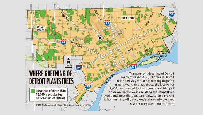 Where Greening of Detroit plants trees