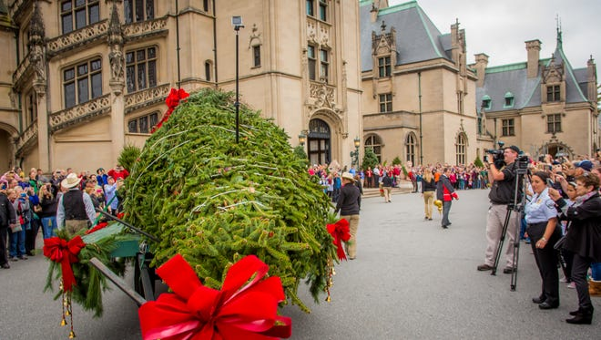 A 35-foot, North Carolina-grown Frasier fir arrives to launch Christmas at Biltmore in 2015. This year's tree raising is Nov. 2.