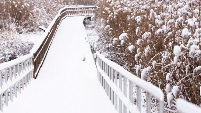 Snowfall at the Meadowlands Environmental Center in Lyndhurst. (Anne-Marie Caruso/@annemariecaruso)