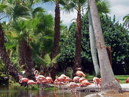10 Awesome Things To Do In Sarasota