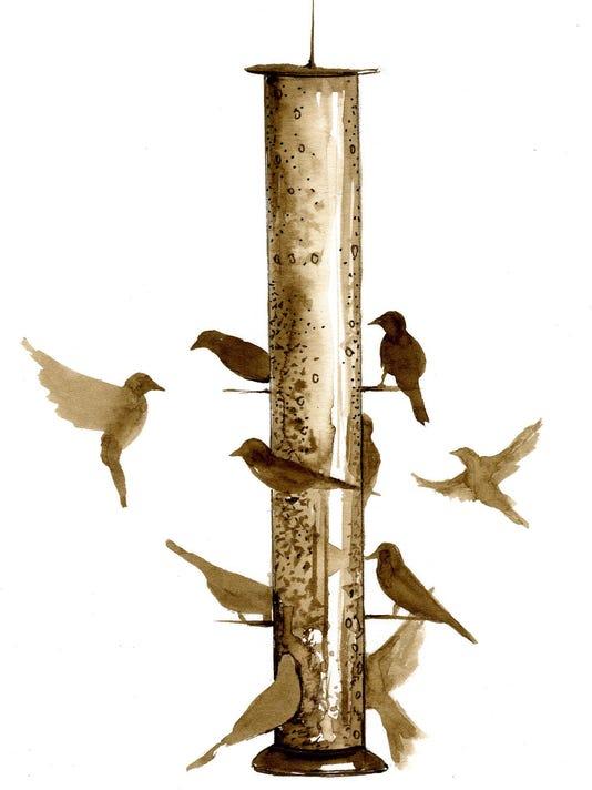 TOS_bird_feeders