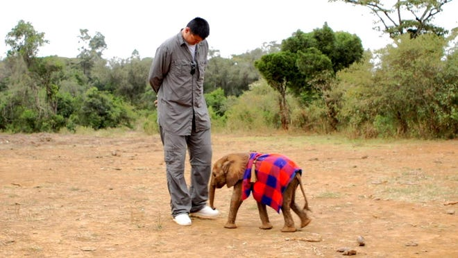 Retired Chinese professional basketball player Yao Ming poses with a baby elephant. Ming sets off to help save Africa's elephants and rhinos from extinction by changing a 1,000-year-old Chinese tradition and ending the trade of illegal ivory and rhino horn in his native China in an Animal Planet special airing in the fall.