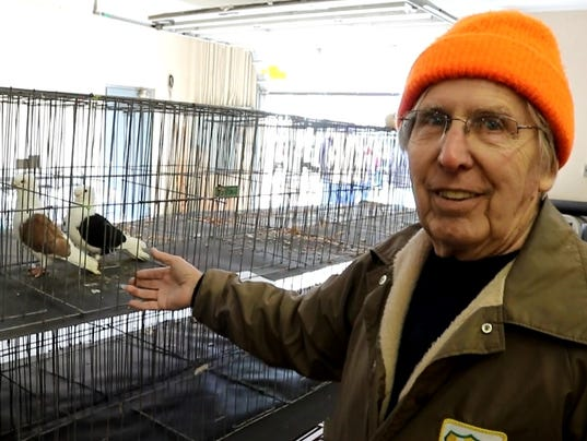 1-pigeon-club-Larry-Gardner-SCREEN.jpg