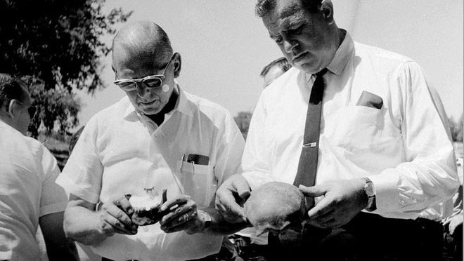 Tazewell County Coroner Louis Imig and Sheriff Arch Bartelmay examine the skull and jawbone of an unidentified black male whose skeleton was found in an old wooden box along the Powerton Plant outlet canal Aug. 5, 1964.