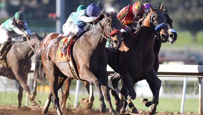 Hoppertunity, inside, topped Imperative in the Grade II San Antonio.