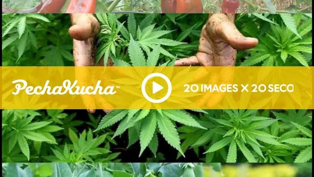 PechaKucha lectures range from academic to lighthearted. Former candidate for district attorney, lawyer Ben Scales, delivered a talk about a backyard marijuana operation that included a song.