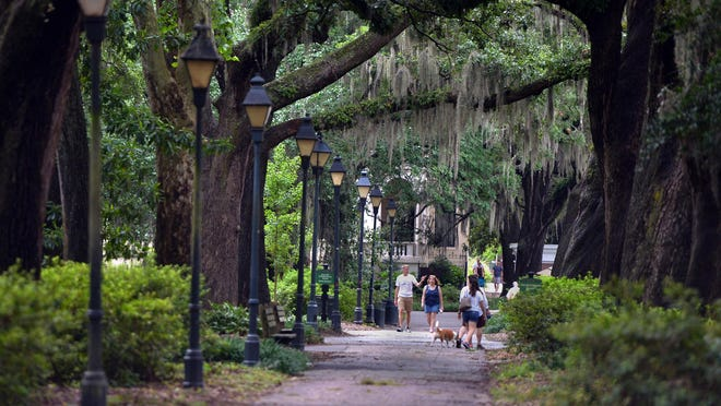 A  new master planning effort has been launched for Forsyth Park.