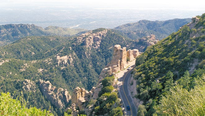 The Catalina Highway snakes up Mount Lemmon, northeast of Tucson. Mount Lemmon is a sky island and the starting place for many thunderstorms in the summer.