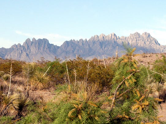 The Organ Mountains are just a small part of the Organ