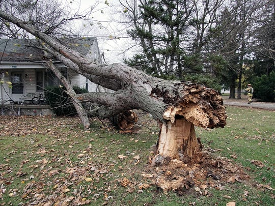 Firefighters respond to a downed tree at 1417 Vernon Road in Madison Township on Thursday.
