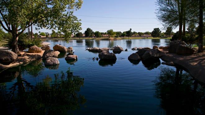 Ducks sit on the calm water as Freestone Park in Gilbert, Ariz.