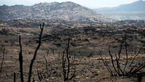 Burned vegetation is seen in front of a burned hill