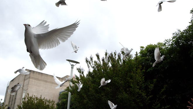 Doves are released by victims of crime at the end of the Victims Dedication Ceremony on Friday.