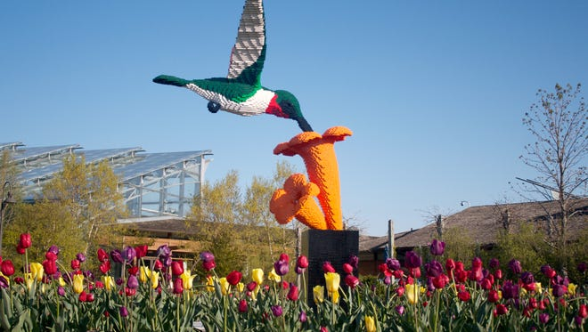 """A hummingbird made with 31,565 Lego pieces is among the 16 sculptures coming to Green Bay Botanical Garden next summer for the touring exhibit """"Nature Connects: Art with Lego Bricks."""""""