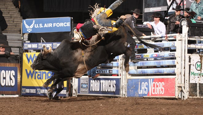 Robson Palermo attempts to ride Chicken on a Chain in this undated photo. The now-retired bull was PBR's 2007 world champion.