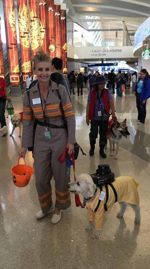 "Therapy dogs at LAX were dressed up for the ""Howling"""