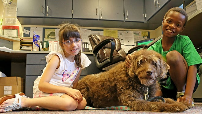 After 11  years of service Teagan, the therapy dog, is retiring