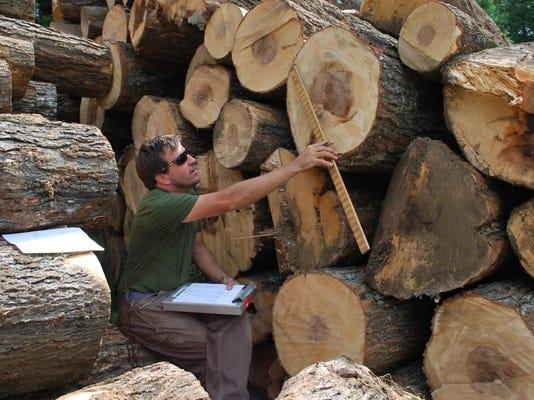 -BUR 0905 Innovate Wood 01.JPG_20130829.jpg
