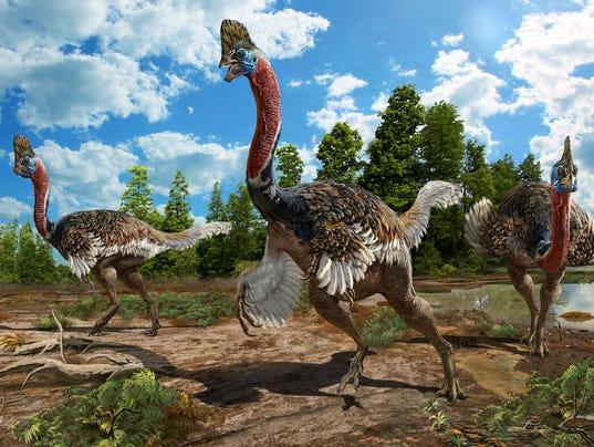 Paleo discoveries of 2017. - Page 2 636366832170019587-XXX-Corythoraptors02