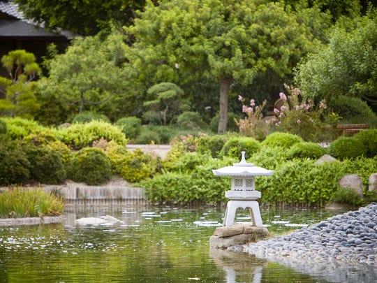 The Japanese Friendship Garden in downtown Phoenix